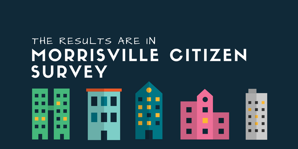 Citizen Survey Banner
